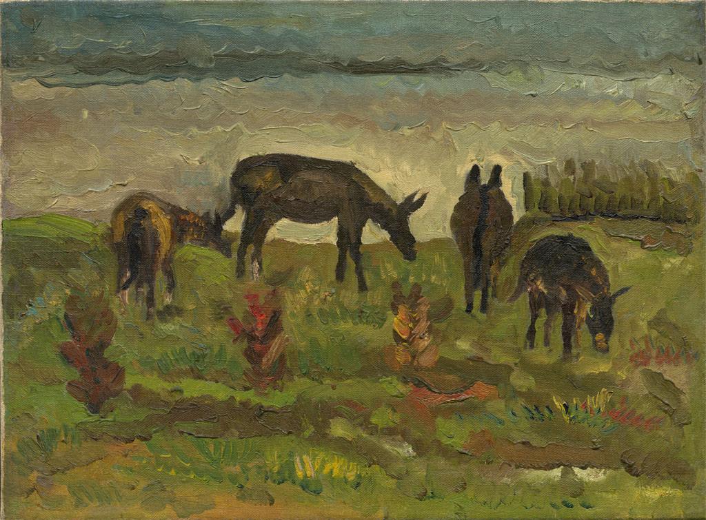 普陀山群驢